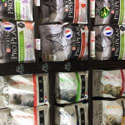 Alimentation chiens et chats